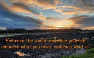 embrace, difference4you, worklife balance, business coach, loopbaanbegeleider, spreker